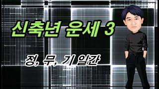 신축년 운세 3 - 정, 무, 기 일간