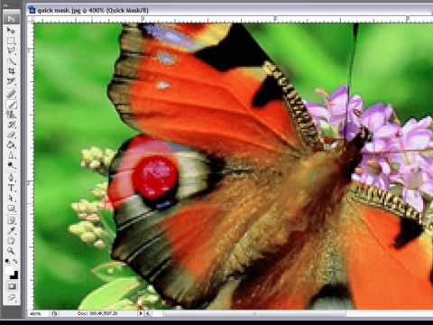 How Too Use Quick Mask Mode In Photoshop CS3