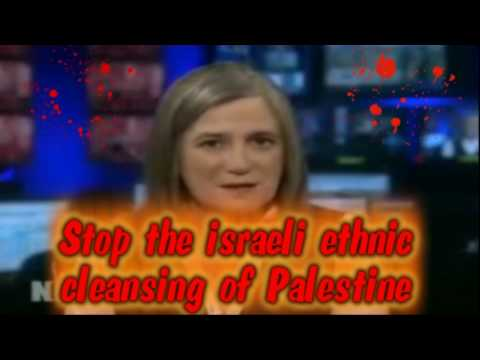 israeli Ethnic Cleansing of Palestine : Palestinians Face Mass Deportation