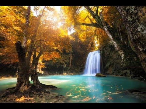 Free Fall Desktop Wallpaper For Windows 7 Relaxing Flute Music Peaceful Music Relaxing Meditation
