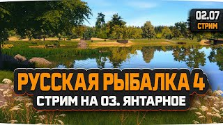 Русская Рыбалка 4 Стрим на Янтарном озере