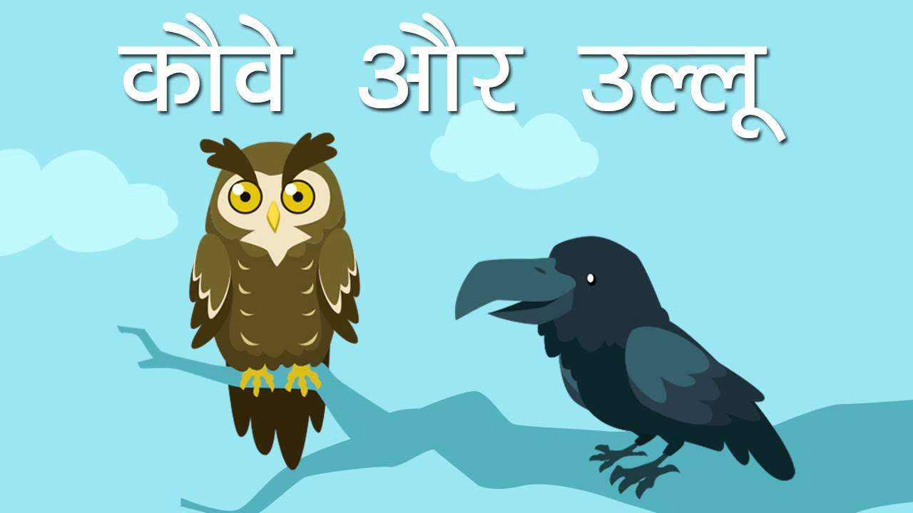 crows and owl youtube