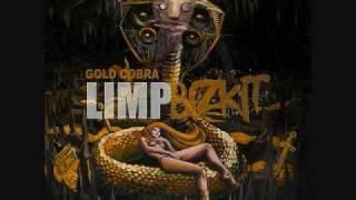 Limp Bizkit- Dancefloor New Song 2010
