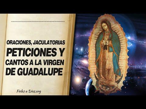 🙏 Oraciones, JACULATORIAS, PETICIONES Y CANTOS a la Virgen de Guadalupe 📖