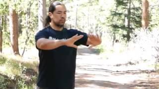 Sifu David Wei demonstrated the Wudang Five Element Qigong