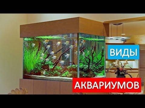 Виды  аквариумов. Выбор аквариума.