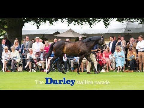 The 2017 Darley stallion parade at Dalham Hall stud