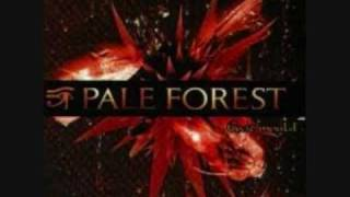 Watch Pale Forest Mr Trenchcoat video