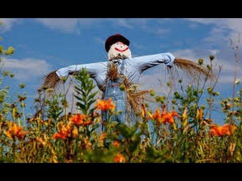 Como hacer un espantapajaros 1 youtube - Hacer un jardin ...