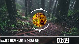 Maleek Berry  - Lost In The World