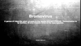 Medical vocabulary: What does Bromovirus mean