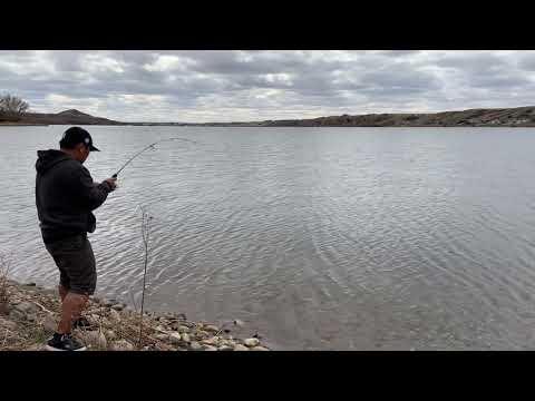 Northern Pike @blackstrap Lake Saskatchewan