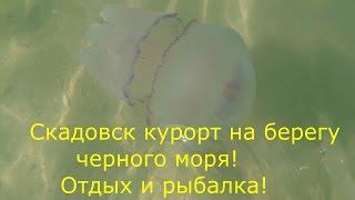 Скадовск курорт на берегу черного моря 2016 ! Цены рыбалка условия ! Херсон !