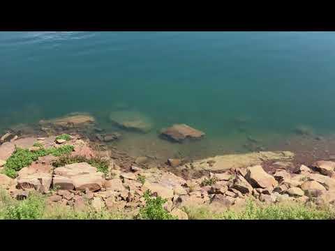 Sterkfontein Fish