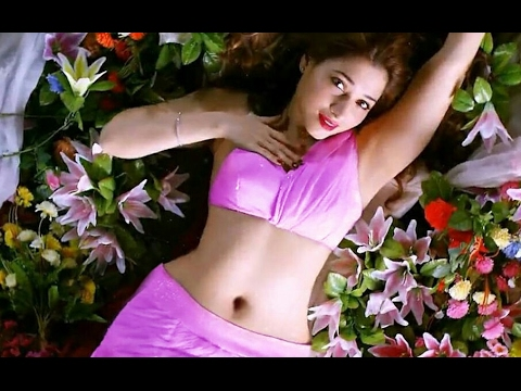 Tamanna bhatia hot navel compilation