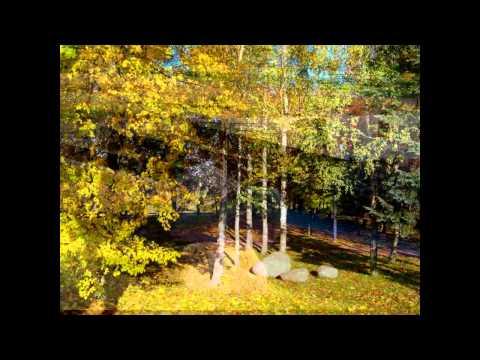 Autumn Marijampole Lithuania.avi