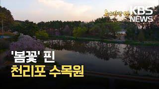 [뉴스광장 영상] 천리포 수목원 / KBS 2021.0…