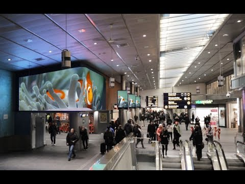 Digital Premium at Oslo Central Station | JCDecaux Norway