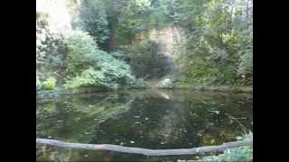 Popular Videos - Gardens in Ludwigsburg & キュルビスアウスシュテルング・ルートヴィヒスブルク