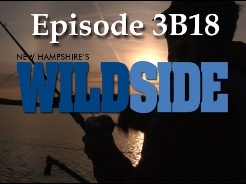 NH WildSide 3B18