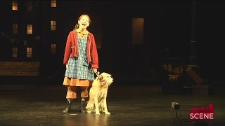 Video Flatrock Playhouse Production of Annie Features Broadway Stars download MP3, 3GP, MP4, WEBM, AVI, FLV Juli 2017