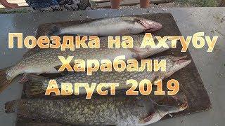 рЫБАЛКА ХАРАБАЛИ АВГУСТ 2017