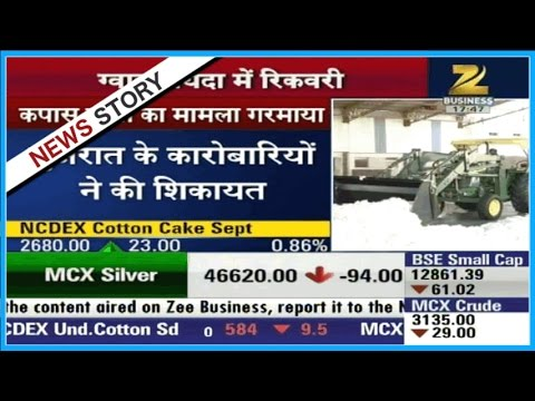 Mandi Live | Gujarat businessmen complains to SEBI about cotton cake issue