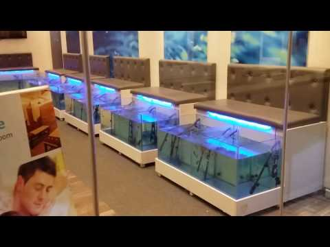 Fish Spa Treatment For Feet! (Athens, Greece)