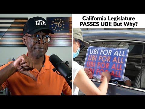 """California Legislature Passes UBI For... """"Pregnant People""""?"""