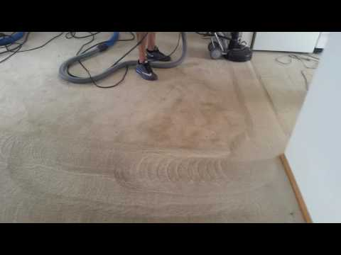 Rotovac 360i brush head/ carpet cleaning cocktail/cleaning service pro/truly kleen/ Peoria az
