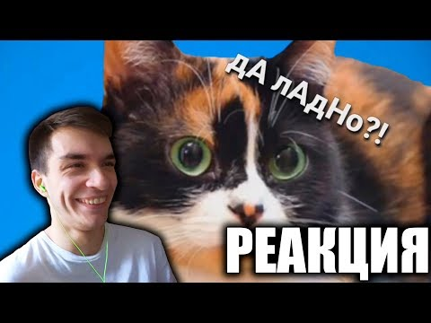 Сливки ШоШ   RYTP - SlivkiShow - РЕАКЦИЯ СЛАВИКА