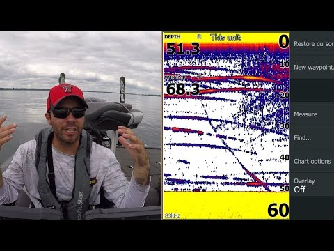 Learning How To Video Game Smallmouth 1000 Islands BFL Tournament (SCREENSHOTS)