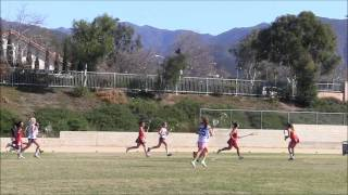 Whs Lax V Mandarin 3dec2011.wmv