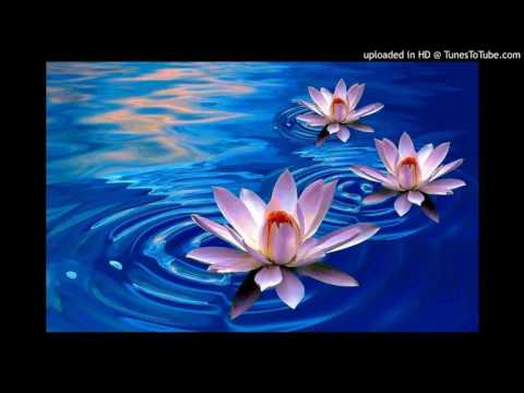 Radiohead - Lotus Flower (JFTH Rework)
