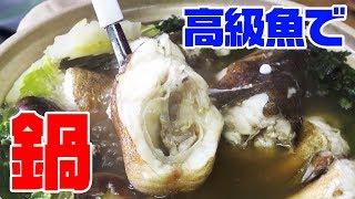 寒くなって来たから釣れた【高級魚】使って贅沢に鍋を作ってみました‼