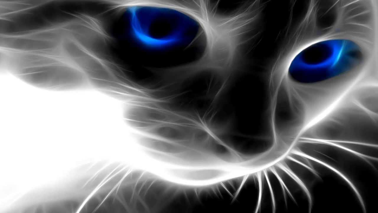Resultado de imagen para fantasmas felinos