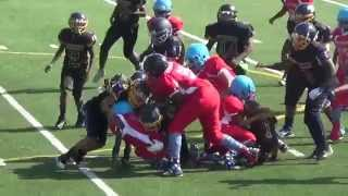 TwinSportsTV: Stockbridge Generals vs. Bryson Park Titans 12U Football