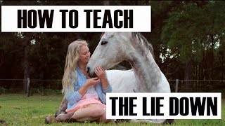 How To Teach Your Horse to Lie Down (no ropes)