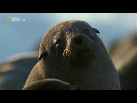 National Geographic: Враждебная планета 2 серия - Океаны