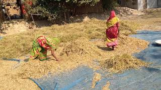 People living in char area of assam(1)
