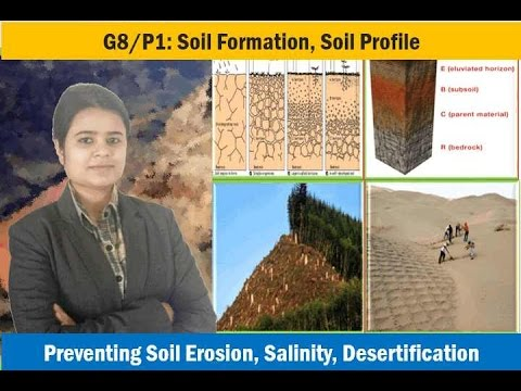 G8/P1: Soil profile, erosion, conservation, salinity, desertification