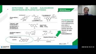 [WEBINAR] A importância das culturas de cobertura no manejo de plantas daninhas