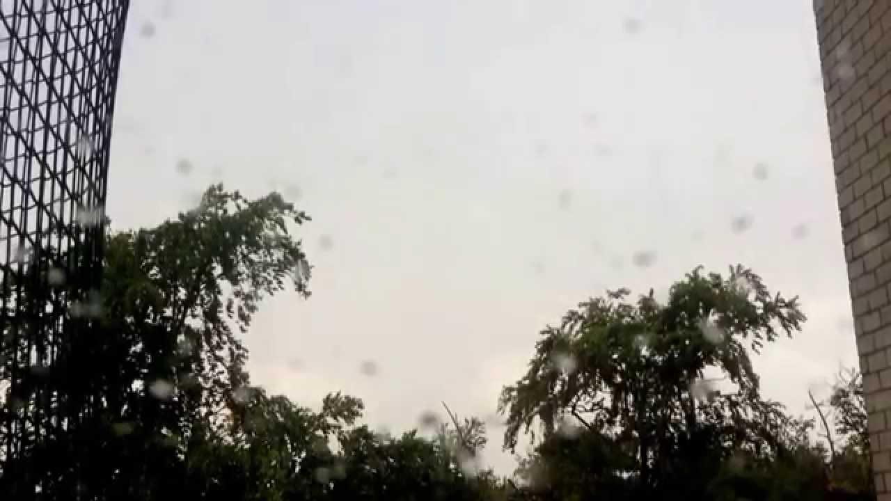 Blitz Schlägt In Baum Ein
