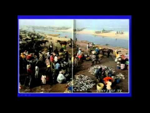 Global Environment - Fisheries (part 4)
