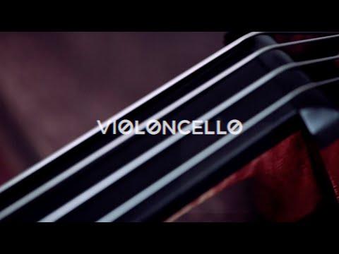 Resonancias, la armonía del sonido: Violoncello