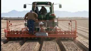 2012 Yuma Salicornia Planting 5min 15 sec