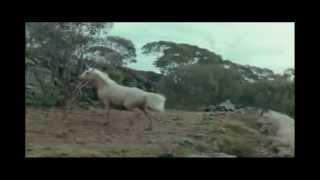 Susan Boyle - Wild Horses