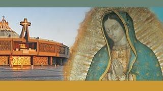 La Santa Misa, Lunes 29 de Agosto,2016
