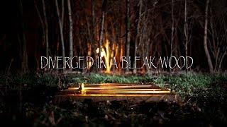 Diverged in a Bleak Wood | Short Horror Film
