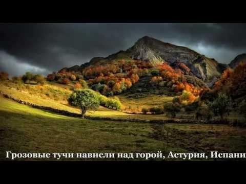 Приключения Кота Леопольда - смотреть онлайн мультфильм